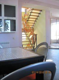 Лестница на металлокаркасе. Древа Цвет - нестандартные столярные конструкции из цветного дерева