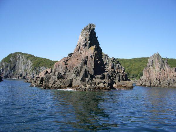 Островная природа.