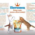 Силикагелевый наполнитель для кошачьего туалета Питомец