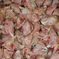 Головы куриные