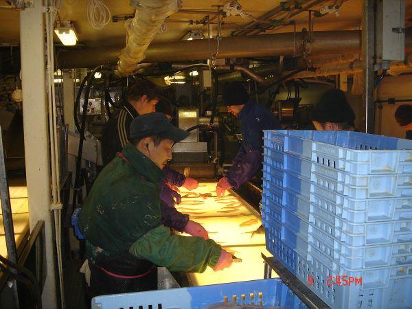 Работа в петропавловск камчатский работа девушкам до 18