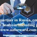 We will check your partner in Russia, complete information and financial analysis